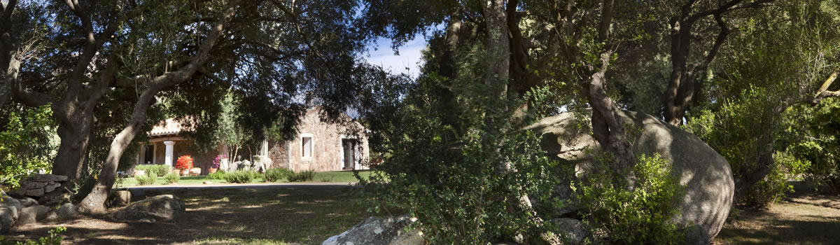 hotel-parco-degli-ulivi-arzachena-sardinia-the-park-photo1
